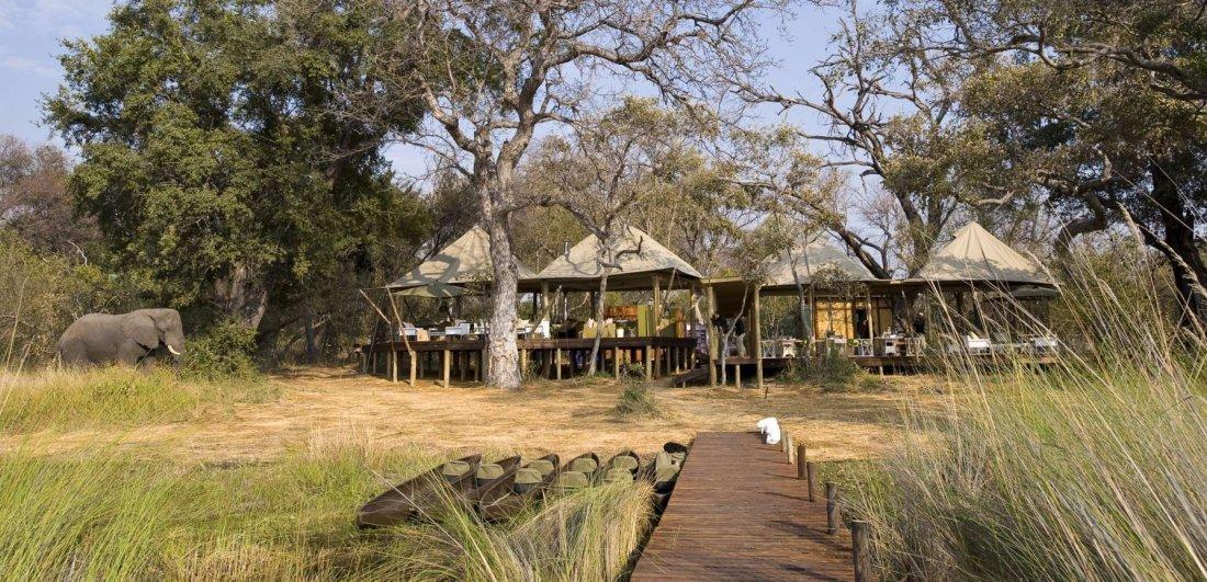 Xaranna in Okavango Delta is located in the heart of the bush