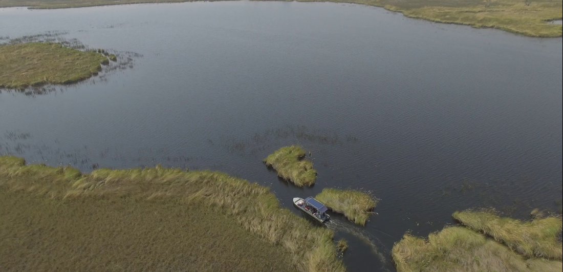 Boat safaris are common in the Okavango Delta