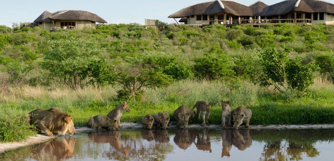The green season in Botswana generally has some great accommodation savings