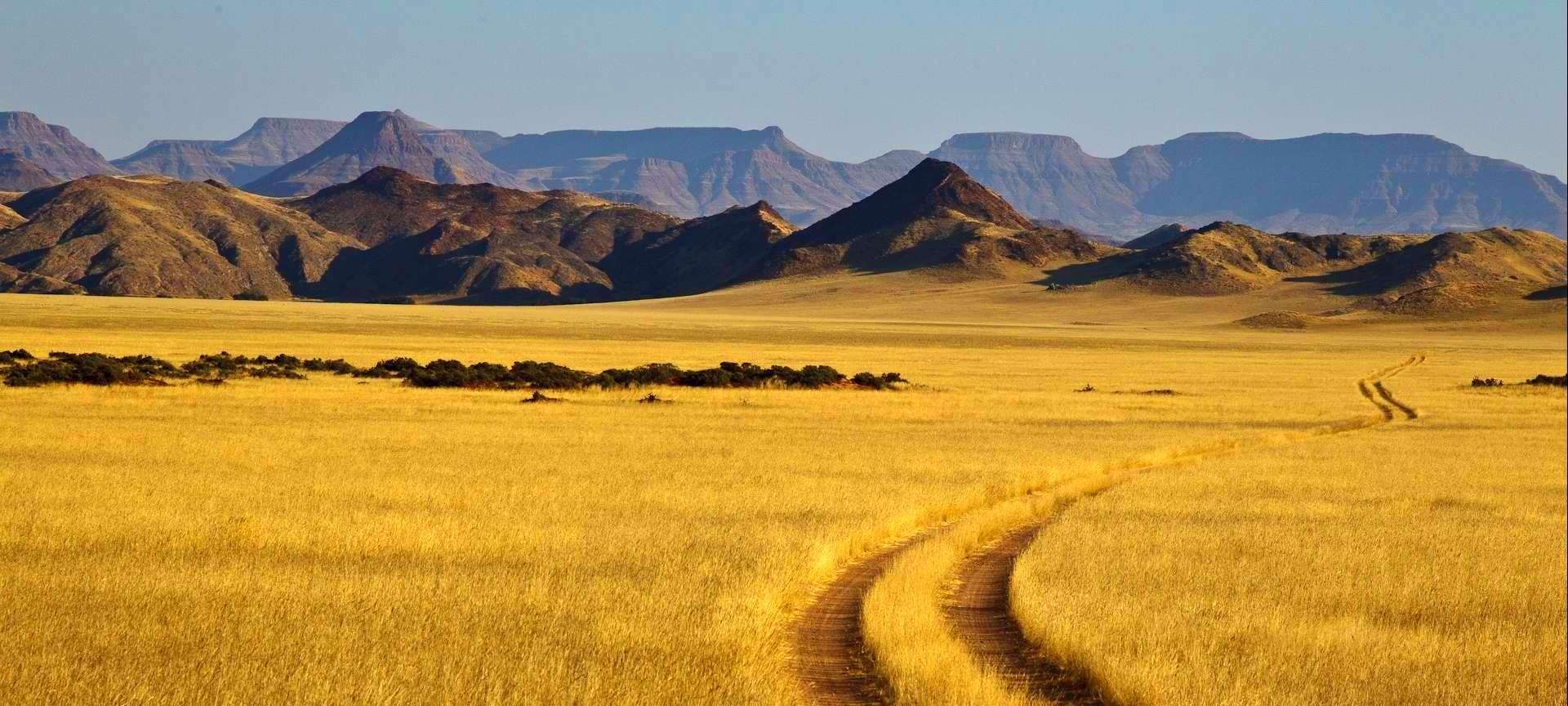 Wildlife at Damaraland Camp - Image by Wilderness Safaris Colourful ...