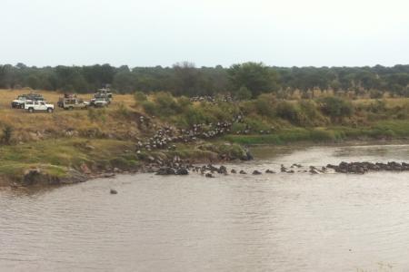 mara-river-crossings