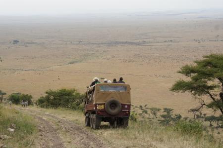 mara-triangle-full-of-wildebeest