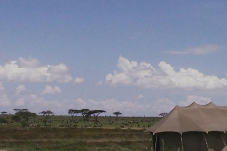 The view from Namiri Plains Camp