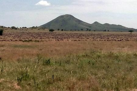 Great views from Kananga Special Tented Camp