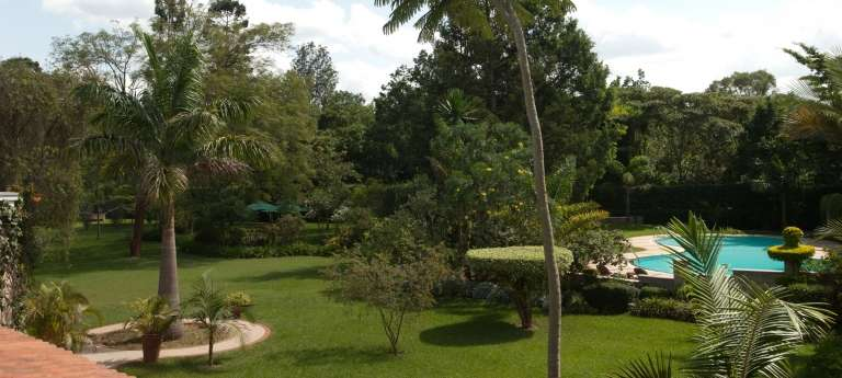 Garden and Pool at House of Waine, Kenya