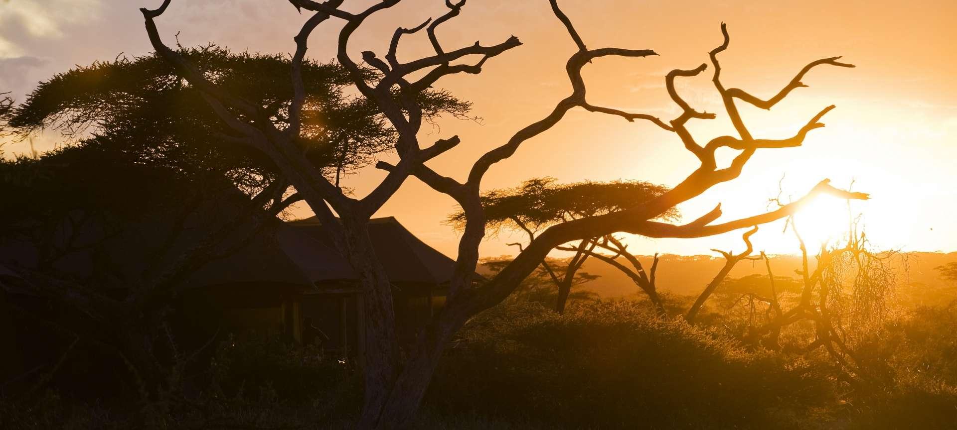 Lake Masek Luxury Tented Camp Ndutu Tanzania Discover