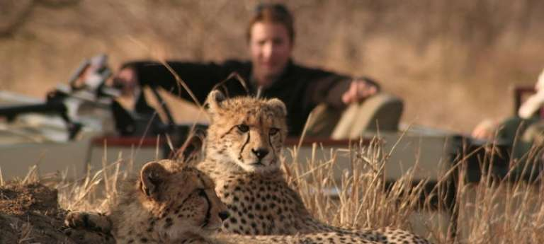 Cape Town & Kruger Family Safari (SA 8 days)