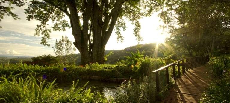 Gibbs Farm Garden in Ngorongoro Conservation Area, Tanzania