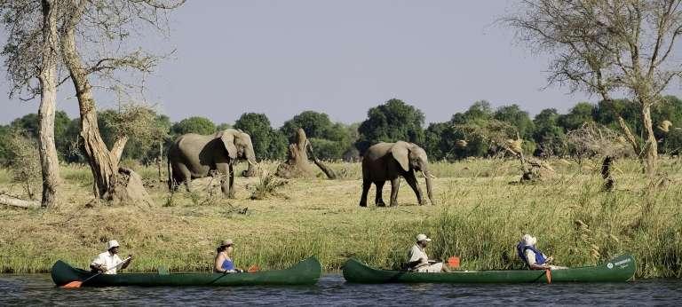 A boating safari at Mana Pools National Park, Zimbabwe