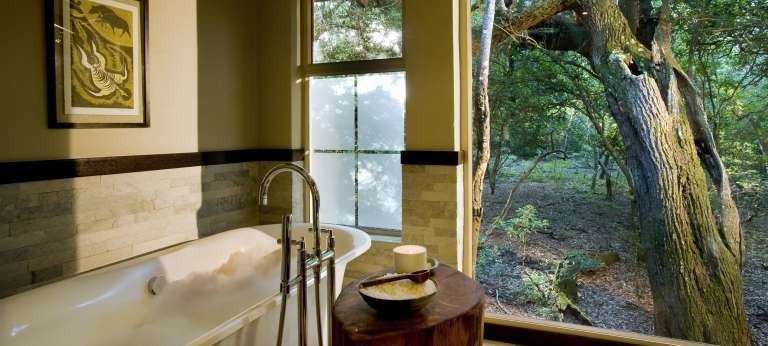 The bathroom view at Phinda Forest Lodge, Accomodation, South Africa