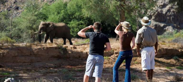 Damaraland Camp Game Viewing, Nambia