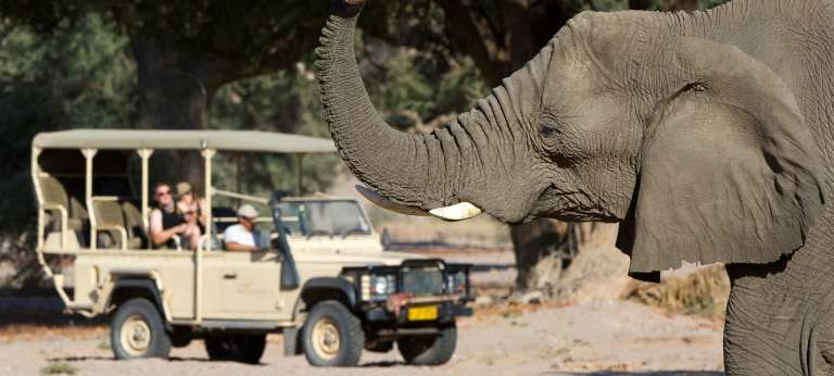 Elephant with Guests on Safari at Damaraland Camp in Damaraland, Nambia