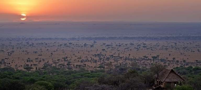 Aerial View of Serengeti Pioneer Camp