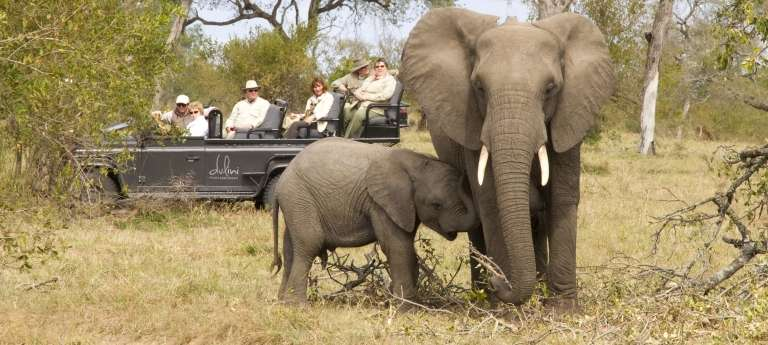 Cape Town, Kruger & Vic Falls Deluxe Honeymoon