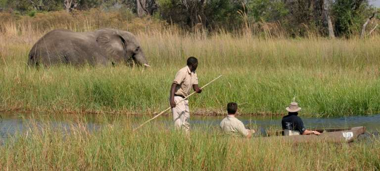 Guests on a Mokoro Ride in Chief's Island, Botswana