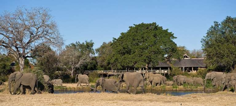 The Ultimate Big Five South African Safari (7 days)