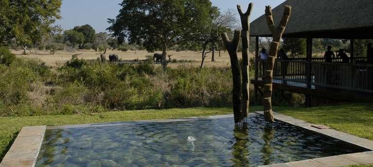 The Ultimate Big Five South African Safari (7 days)