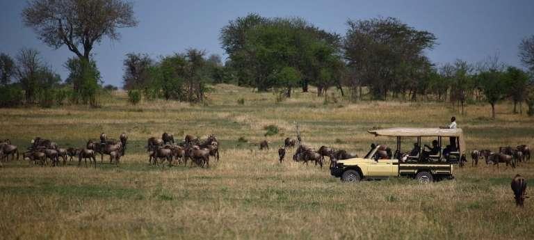 9-day Great Wildebeest Migration safari (Luxury)