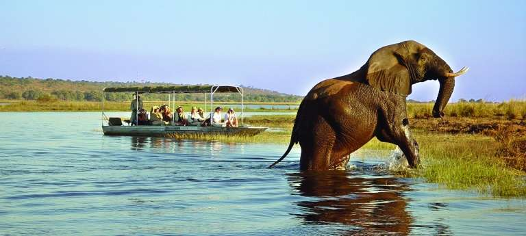 Waterfalls and Wildlife: Victoria Falls and Chobe National Park Journey (7 days)