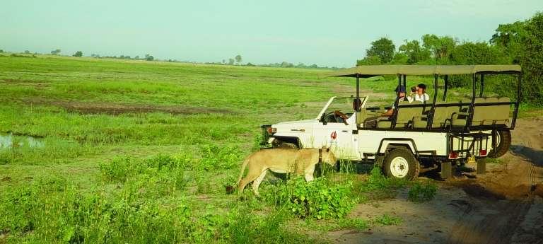 A Game Drive at Chobe Safari Lodge, Kasane, Botswana