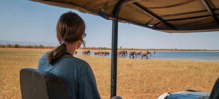 Victoria Falls, Matusadona and Hwange water and wildlife safari
