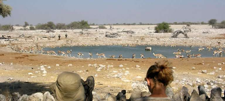 Namibia safari adventure
