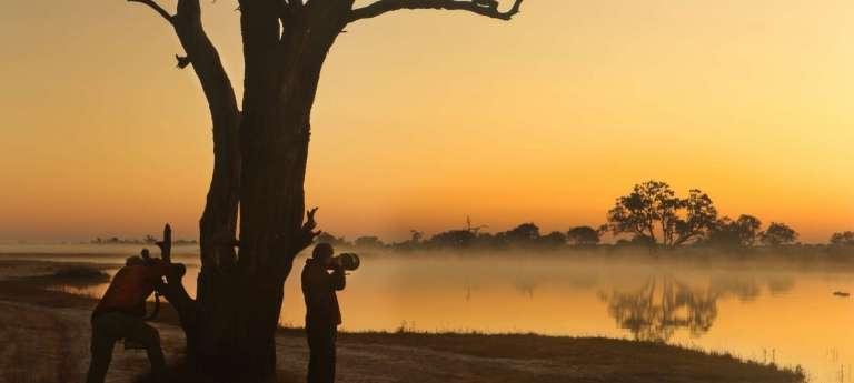 Photographic tour of Botswana (10 days)