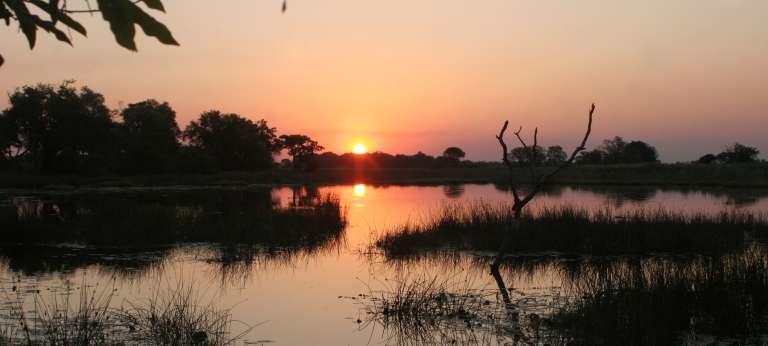 Sabi Sands and Okavango Delta Big Five Tour (8 days)