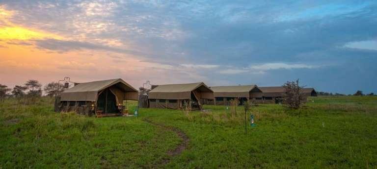 Kananga Special Tented Camp, Serengeti National Park, Tanzania - Africa Wildlife Safaris