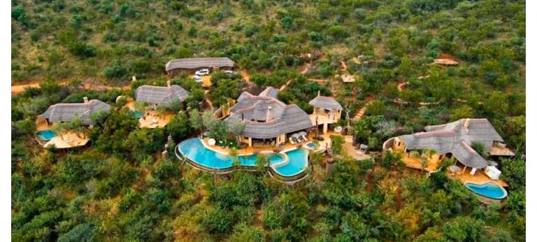 Molori Safari Lodge, Madikwe Private Game Reserve, South Africa - Africa Wildlife Safaris