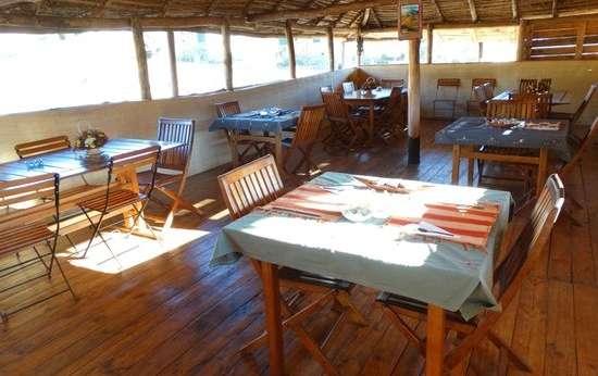 The Wild South Madagascar Tour