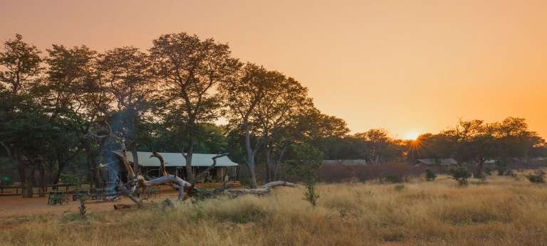 Wild Botswana and Zimbabwe Safari (10 days)