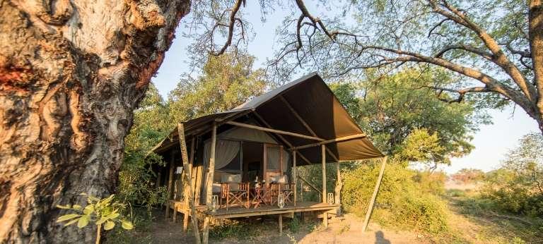 Wilderness and Wildlife in Northern Botswana (7 days)