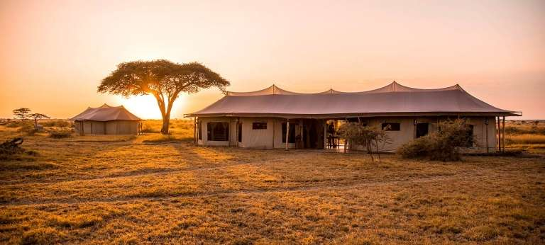Ehlane Plains Camp, Eastern Serengeti - Africa Wildlife Safaris