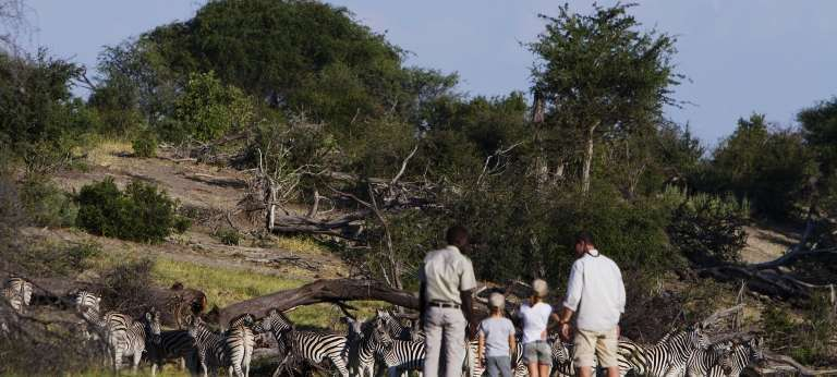 Affordable Makgadikgadi Pans and Okavango Delta Safari (7 days)