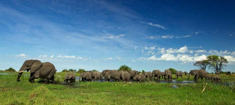 Best of Africa Safari (16 days)