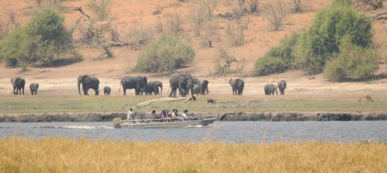 Victoria Falls and Chobe Safari