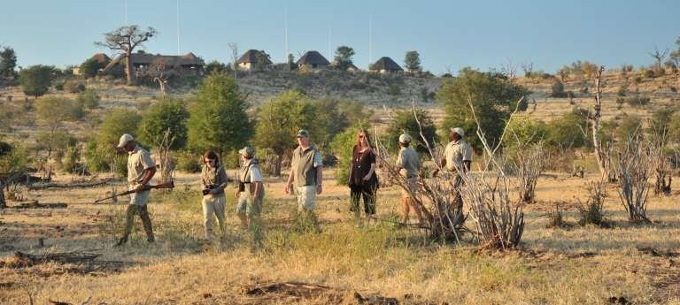 A guided walking safari at Chobe National Park, Botswana