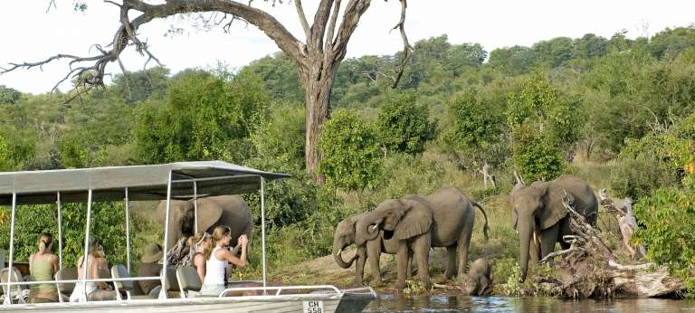 Safari in Vic Falls, Chobe & Okavango Delta