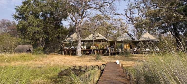Highlights of Northern Botswana (8 days)