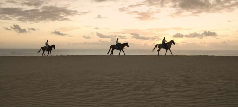 Horse Riding on Dunes, Bazaruto Archipelago, Mozambique