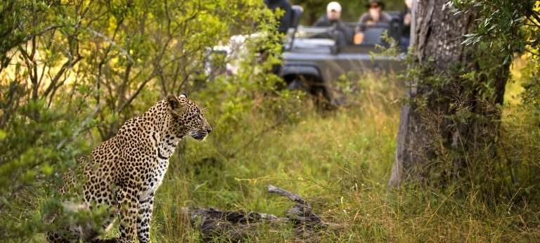 Cosmopolitan Cape Town and Kruger Tour (7 days)