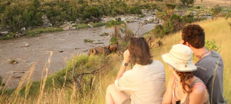 Guests viewing Elephants in Serengeti National Park, Tanzania