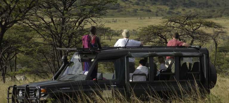 HerdTracker and Kicheche Camps Safari (7 days)