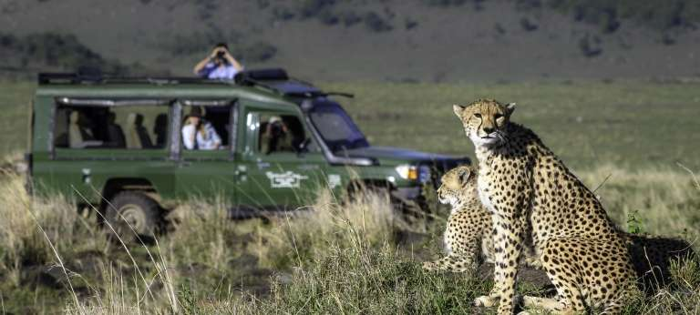 Wilderness safari in Kenya, Zambia and Zimbabwe (10 days)