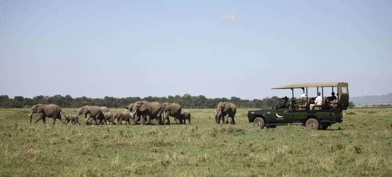 Masai Mara safari adventure
