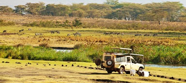 The Manor - African Wildlife Safaris