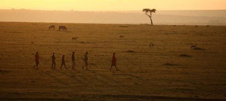 Bush Walk in Masai Mara, Kenya
