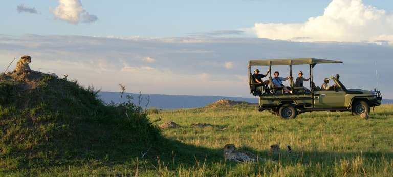 Gorilla trekking and the Great Migration Combo Safari (11 days)