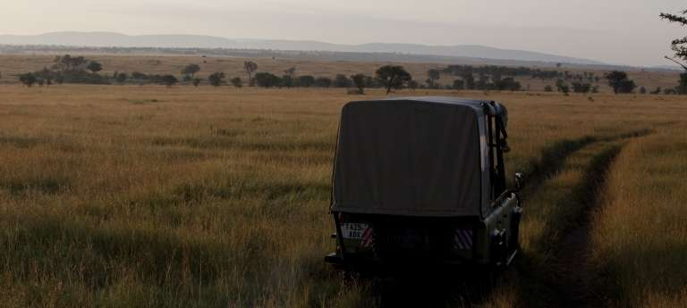 A game drive safari at  Serengeti National Park, Tanzania